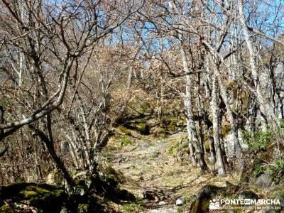 Parque Natural del Lago de Sanabria - grupos senderismo madrid;grupos pequeños